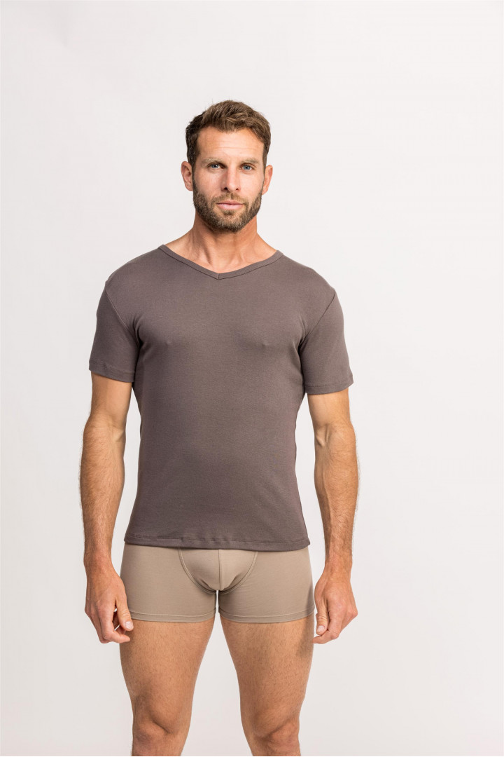 Tee-Shirts Homme Col V